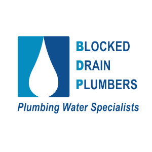 Clogged-Shower-Drain-External